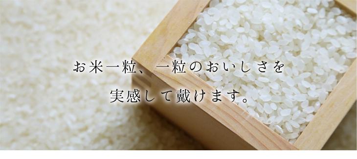お米の一粒一粒を実感