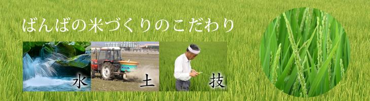 ばんばの米づくり