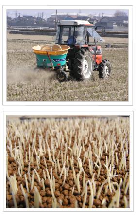 冬の農作業